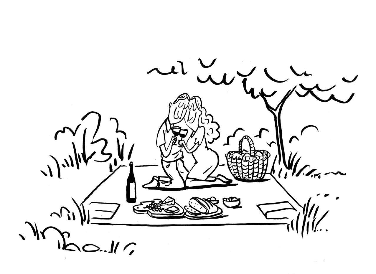 Suba Picnic-Makers Dinner 4.2 auf Deiner Picknickdecke